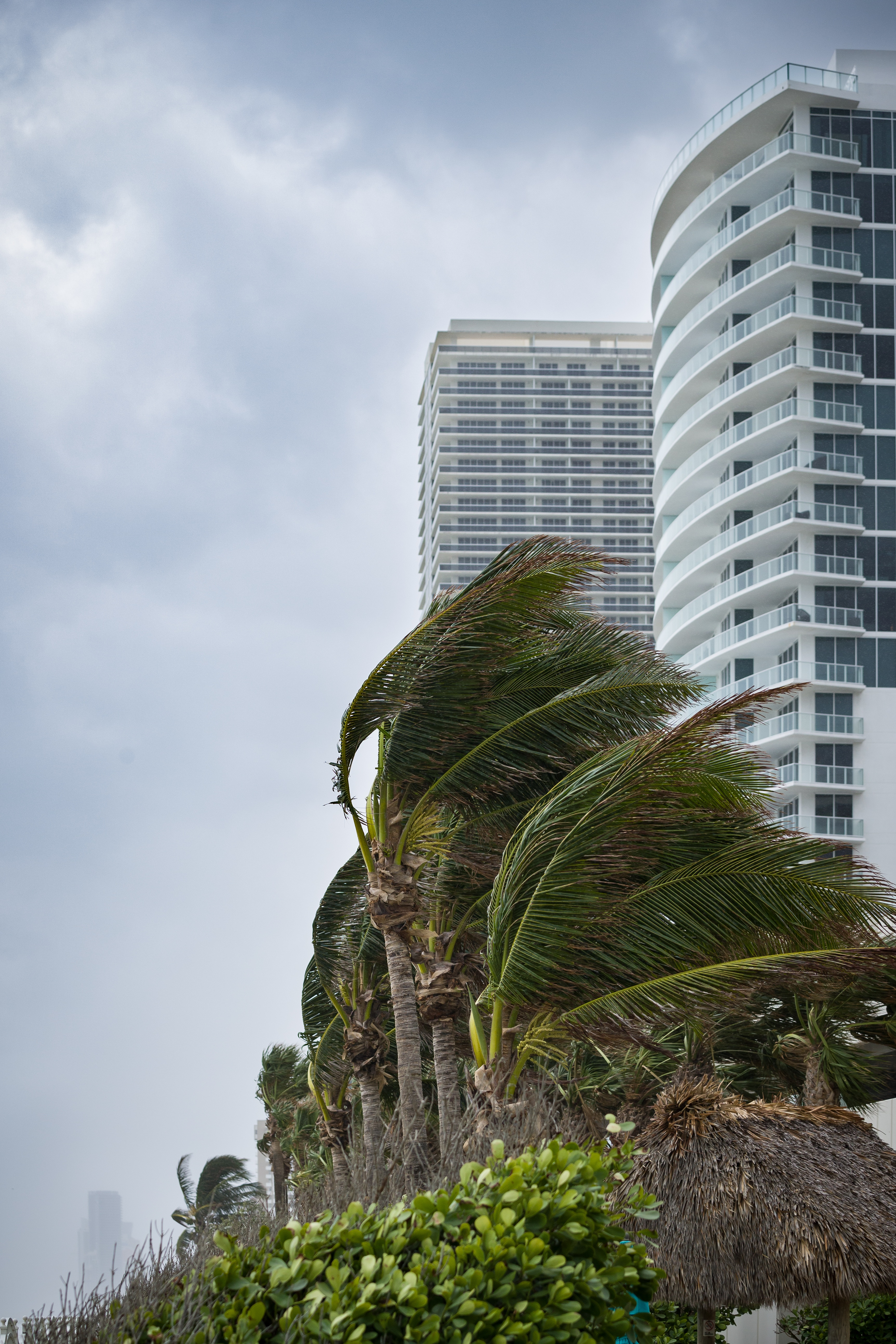 Hurricane Preparedness for Those Living in Florida: Five Essential Steps
