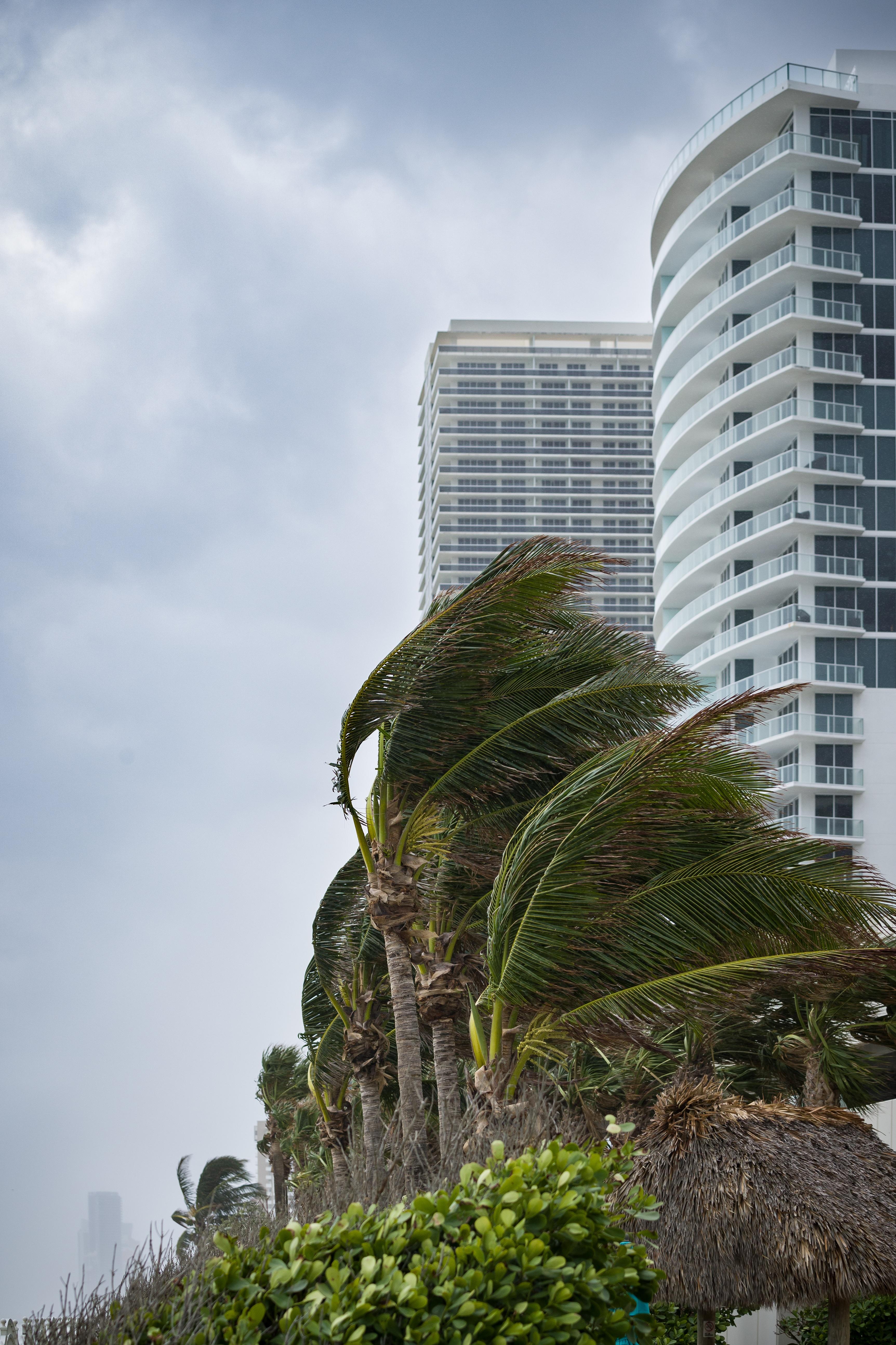 Hurricane Preparedness for Those Living in Florida: Five Essential Steps