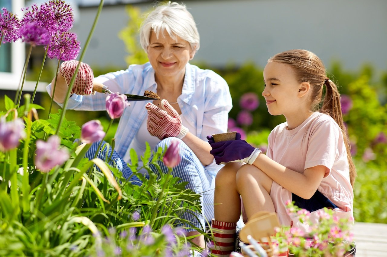 Leisurely Activities to Do with Your Older Loved Ones